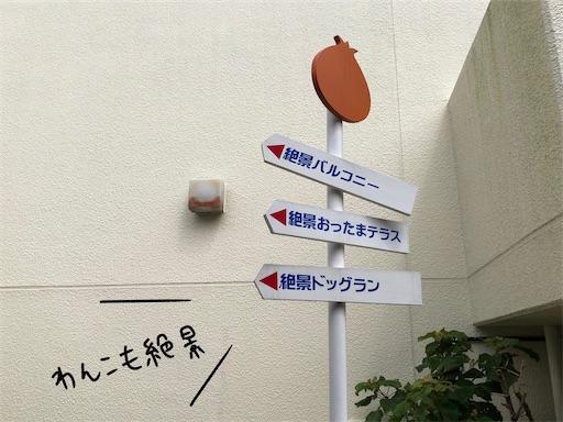 f:id:yukinekokei:20200723220606j:plain