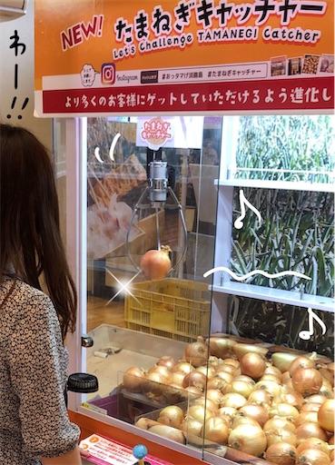 f:id:yukinekokei:20200724212102j:image