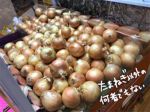 f:id:yukinekokei:20200724212137j:image