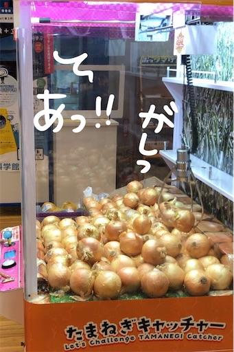 f:id:yukinekokei:20200725213845j:image