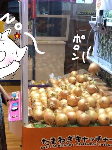 f:id:yukinekokei:20200725213911j:image
