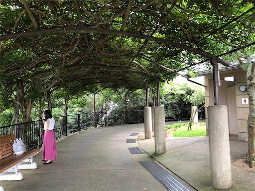 f:id:yukinekokei:20200729120805j:image