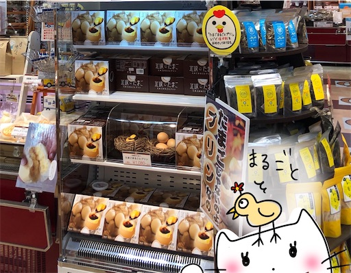 f:id:yukinekokei:20200731221804j:image