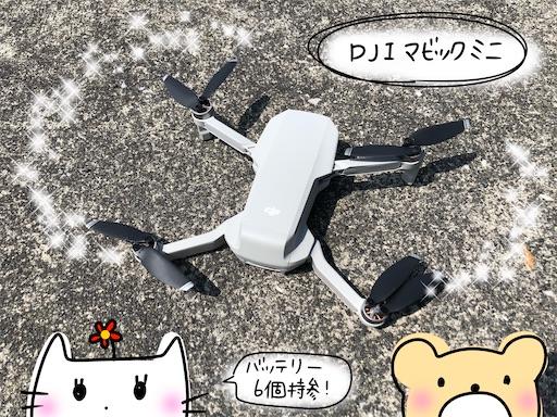 f:id:yukinekokei:20200811172812j:image