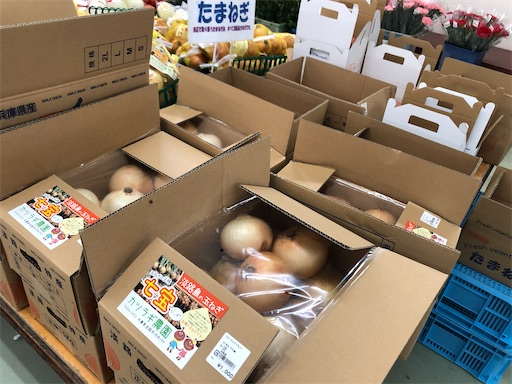 f:id:yukinekokei:20200815075530j:image