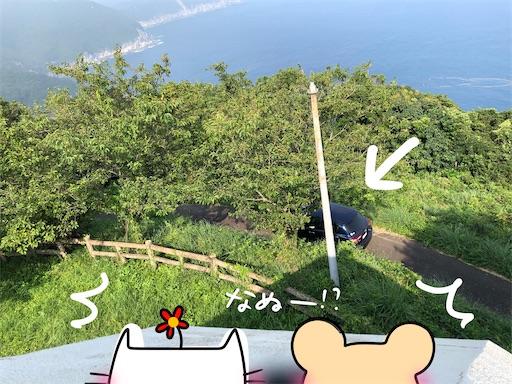 f:id:yukinekokei:20200830220749j:image