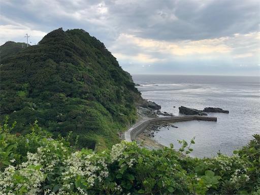 f:id:yukinekokei:20200907174745j:image