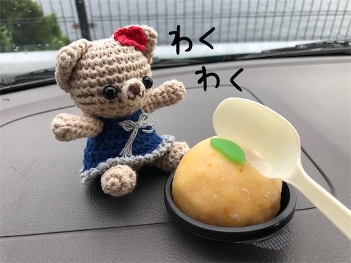 f:id:yukinekokei:20200909234555j:image