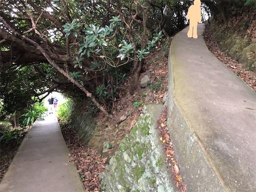 f:id:yukinekokei:20200910224739j:image