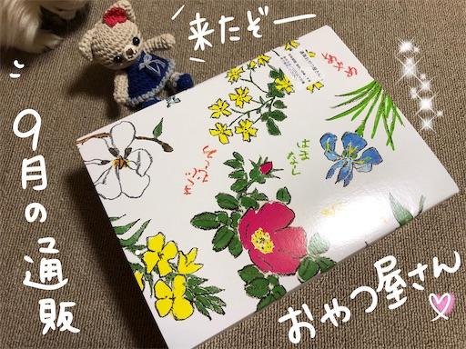 f:id:yukinekokei:20200911204252j:image