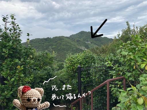 f:id:yukinekokei:20200915000206j:image