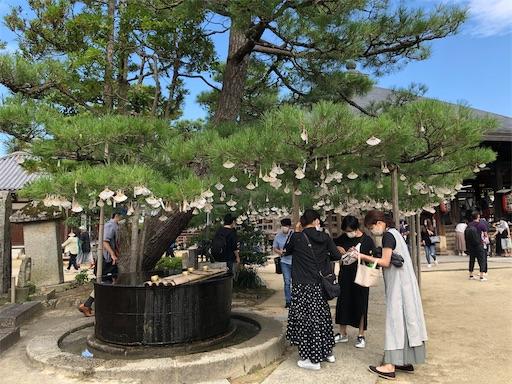 f:id:yukinekokei:20201004102309j:image