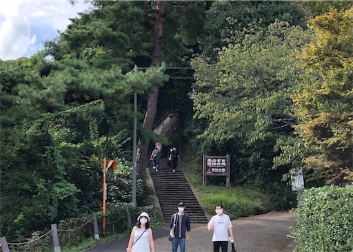 f:id:yukinekokei:20201006222106j:image