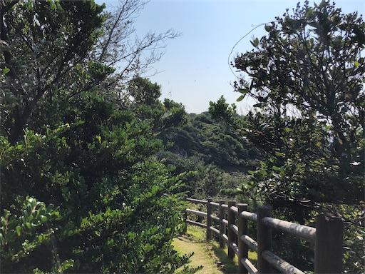 f:id:yukinekokei:20201022110247j:image