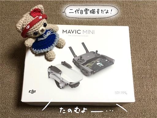 f:id:yukinekokei:20201023203400j:image