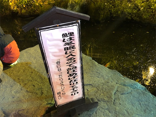 f:id:yukinekokei:20201025221204j:image