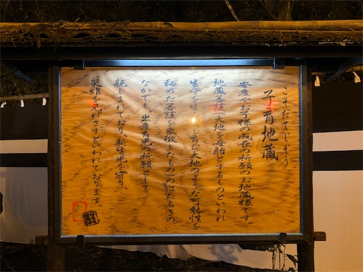 f:id:yukinekokei:20201025221849j:image