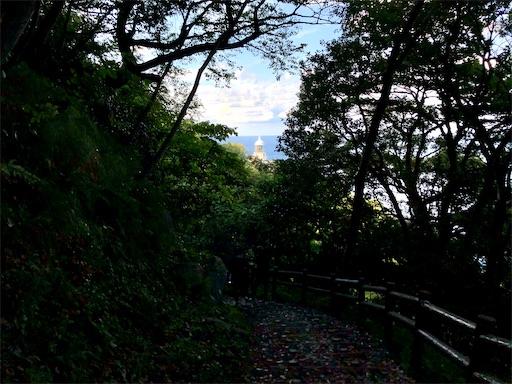 f:id:yukinekokei:20201025231719j:image