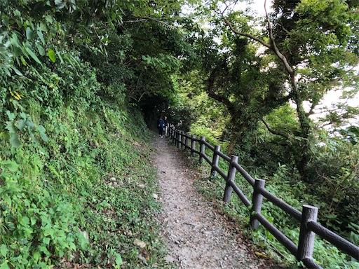 f:id:yukinekokei:20201025231725j:image