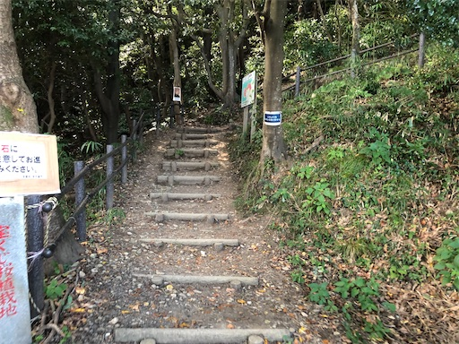 f:id:yukinekokei:20201025231728j:image