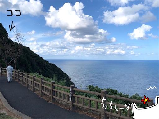 f:id:yukinekokei:20201028213820j:image