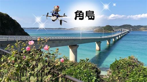 f:id:yukinekokei:20201105112733j:plain