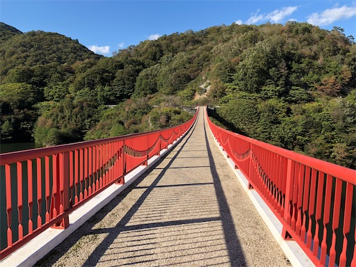 f:id:yukinekokei:20201108141246j:image