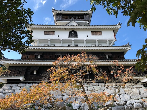 f:id:yukinekokei:20201108152349j:image