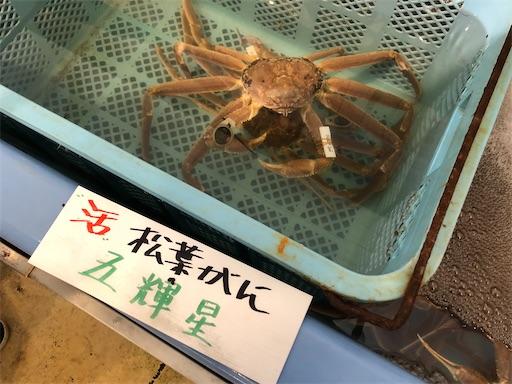 f:id:yukinekokei:20201116084915j:image
