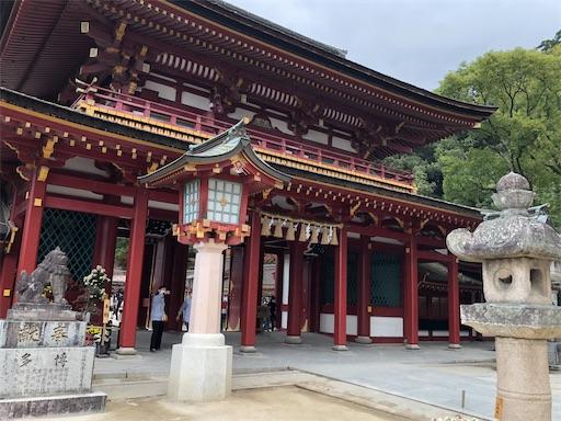 f:id:yukinekokei:20201128203002j:image