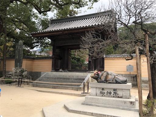 f:id:yukinekokei:20201128203050j:image