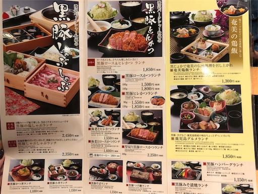 f:id:yukinekokei:20201129202929j:image