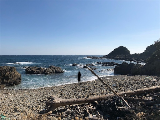 f:id:yukinekokei:20201208130236j:image
