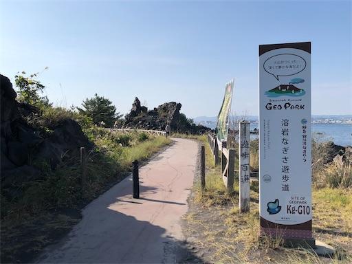 f:id:yukinekokei:20201209123821j:image