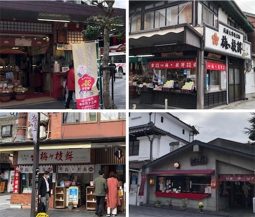 f:id:yukinekokei:20201214163448j:image
