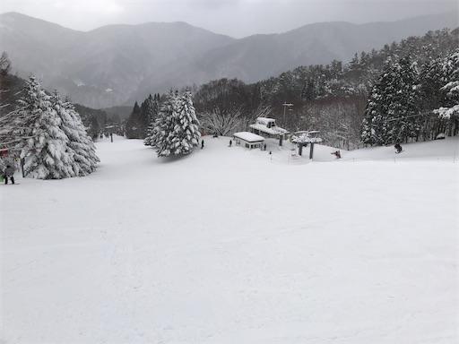 f:id:yukinekokei:20210104011744j:image