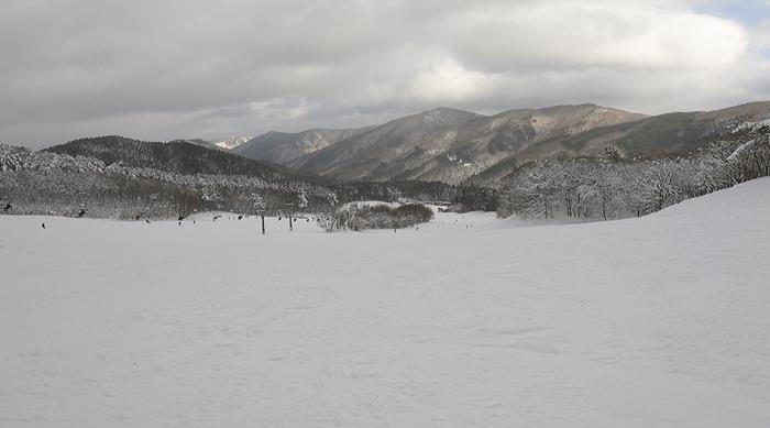 f:id:yukinekokei:20210104165234j:plain