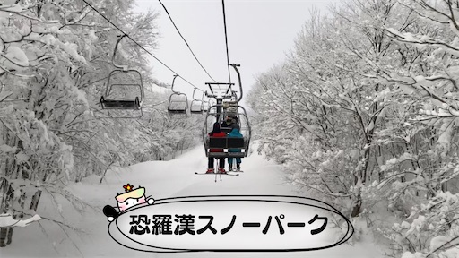 f:id:yukinekokei:20210104172433j:image