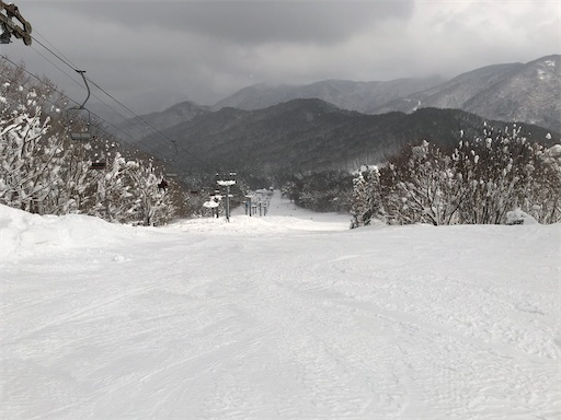 f:id:yukinekokei:20210112141254j:image