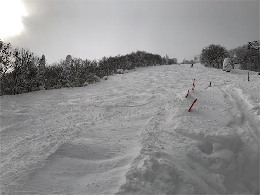 f:id:yukinekokei:20210112141256j:image