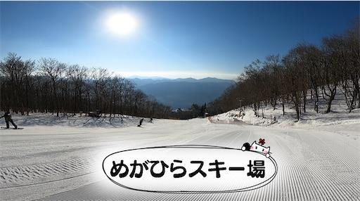 f:id:yukinekokei:20210121192931j:image