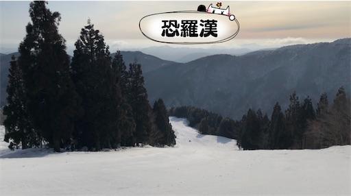 f:id:yukinekokei:20210125230613j:image