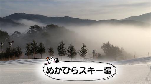 f:id:yukinekokei:20210129103553j:image
