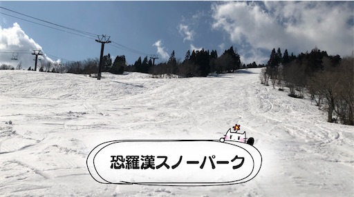 f:id:yukinekokei:20210223130632j:image
