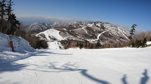 f:id:yukinekokei:20210311203528j:plain