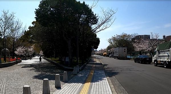f:id:yukinekokei:20210328083610j:plain