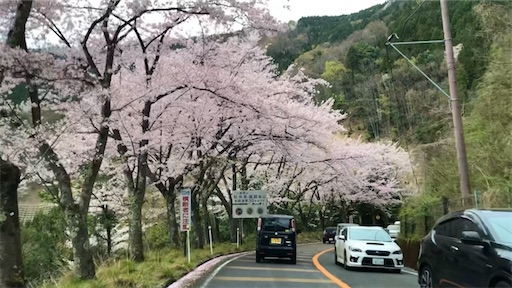 f:id:yukinekokei:20210403173502j:image