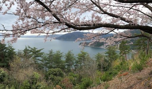 f:id:yukinekokei:20210403175317j:image