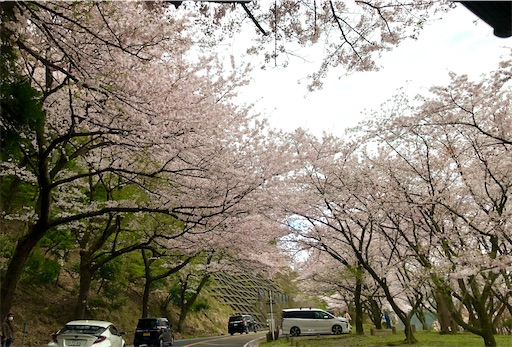 f:id:yukinekokei:20210403175322j:image