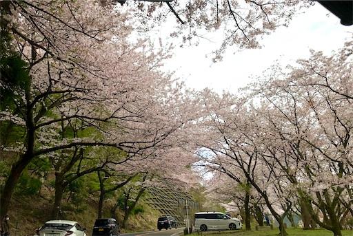 f:id:yukinekokei:20210404113246j:image